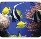 Fellowes Earth Series hiirimatto, Under The Sea