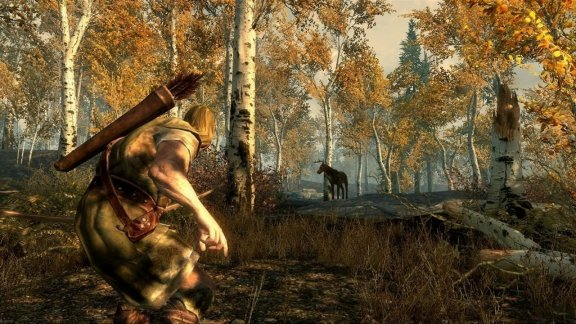 The Elder Scrolls V - Skyrim PS3-peli + kuljetus kaupanpäälle, alv 0% -hintaan Ahvenanmaalta, kuva 4