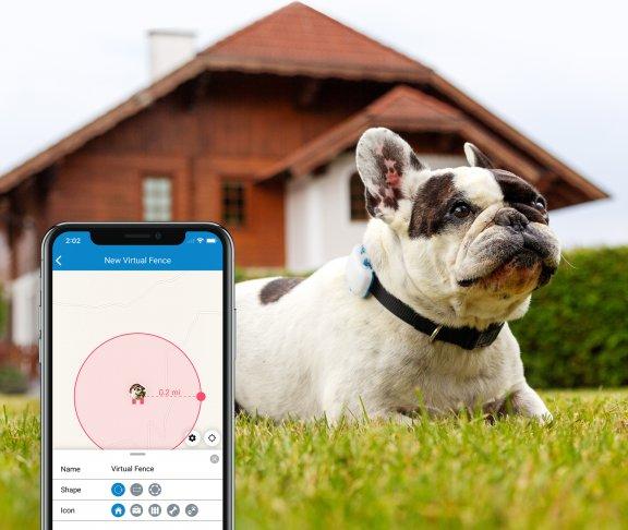 Tractive GPS Dog LTE – koiran GPS-paikannin, kuva 9