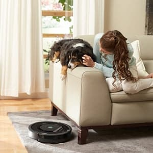 Koira lasten kanssa sohvalla