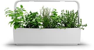 Tregren T12 Kitchen Garden -vesiviljelylaite, valkoinen