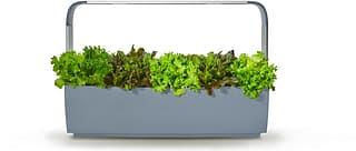 Tregren T12 Kitchen Garden -vesiviljelylaite, harmaa