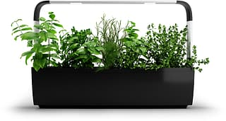 Tregren T12 Kitchen Garden -vesiviljelylaite, musta