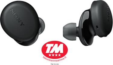 Sony WF-XB700 -Bluetooth-kuulokkeet, musta, kuva 2